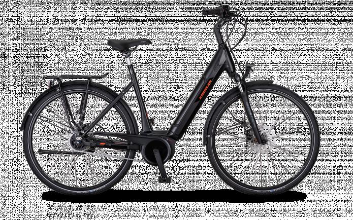 E-Bike - Pedelec Kreidler Vitality Eco8 2702