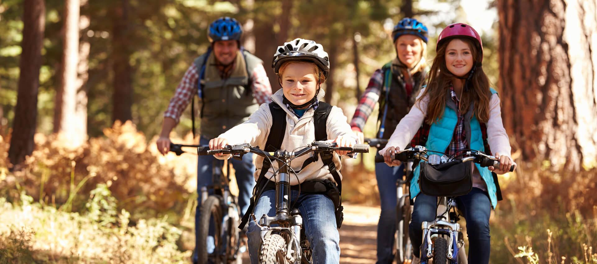 E-Bike - Pedelec, Kinderfahrrad, Rennrad und mehr